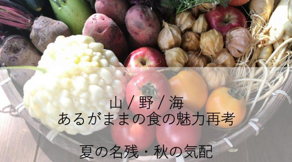 山 / 野 / 海 あるがままの食の魅力再考 夏の名残・秋の気配