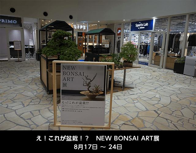 えっ!これが盆栽?!NEW BONSAI ART展