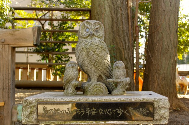 池袋御嶽神社のふくろう